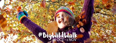 Promotional banner for big wild walk, girls with arms in air in front of autumn leaves