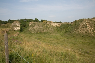 Bishop Middleham Quarry nature reserve