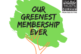 Our Greenest Membership Ever