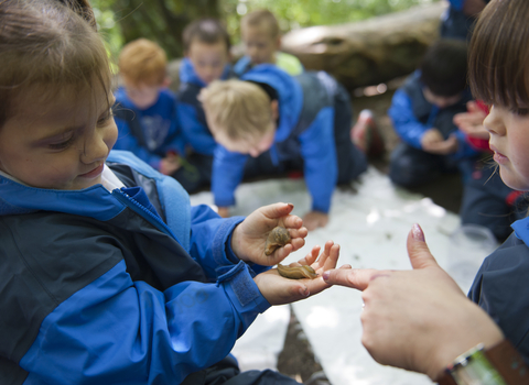 Children learning about bugs as part of school visit