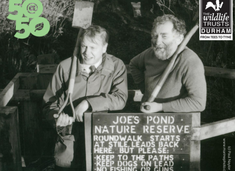 David Attenborough and David Bellamy at Joe's Pond