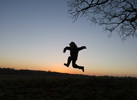 Young child silhouette jumping a sunset under tree